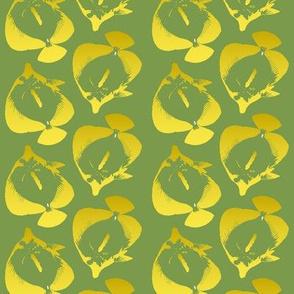yellow tang on green