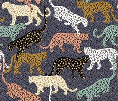 africa africa - leopards - blue