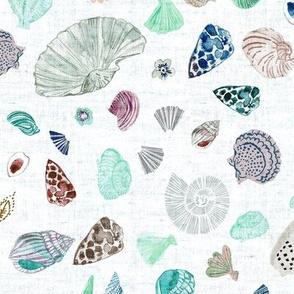 Atlantis Shells (aqua)