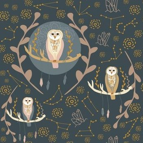 Owlstrology