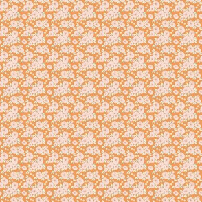IBD-Orange-lilly 1x1