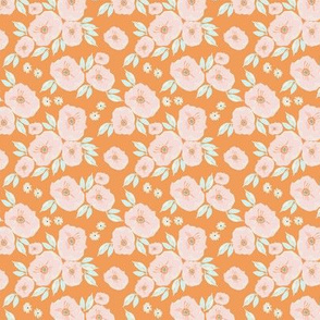 IBD-Orange-lilly 3x3