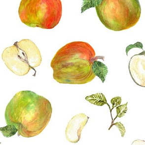 Winter apples by Anna
