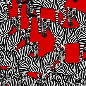 Zebras on red