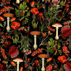 "10"" vintage botanical wildflowers fungus and berries on black"