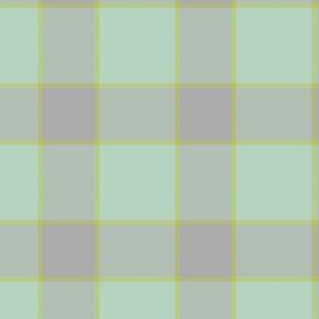 plaid-mint gray