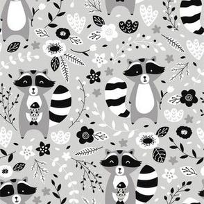 Black & White Racoon