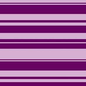 Horizontal Violet Stripes