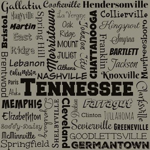 Tennessee cities, standard taupe
