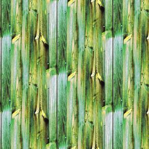 Planches de bois vert - Wood boards green