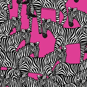 Zebras on Hot Pink