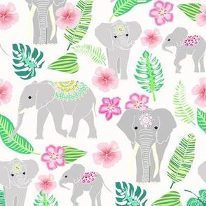 Elephants of the Jungle