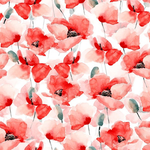 "18"" Poppy - Hand drawn watercolor poppies on white"