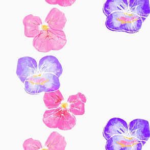 Violets - blossom