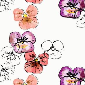 Violets - coral shades