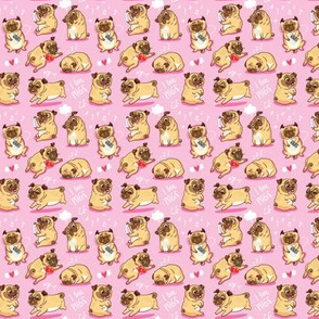 cutest pugs in pink_small