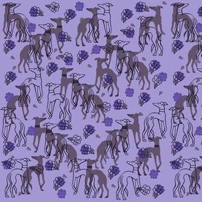 Purple Greyhounds