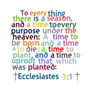 Ecclesiastes 3:1 Swatch