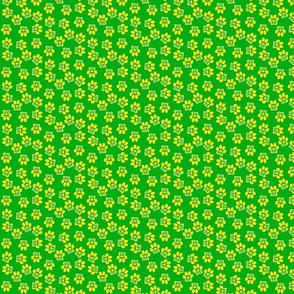 multi m paw green