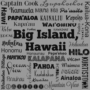 Cities of Big Island, Hawaii, standard gray
