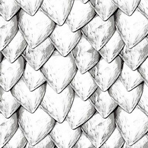 White Dragon Scales