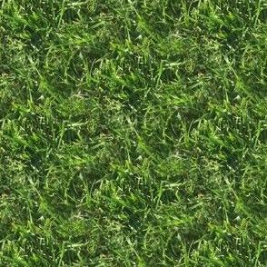 Lush Green Grass | Seamless Photo Terrain