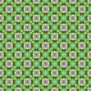 Green and White Cross Pattern