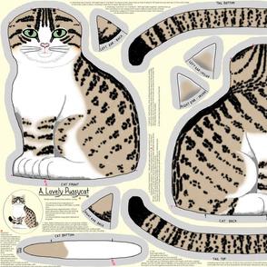 A Lovely Pussycat