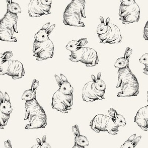 Sketched Black Rabbits || Bone background