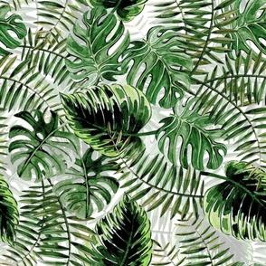 "24"" Bohemian  Hand Drawn Tropical Jungle Garden"