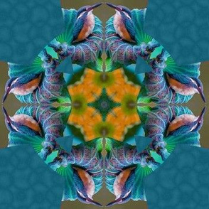 blue hummingbird cross