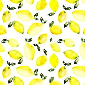 Watercolor lemons, larger scale