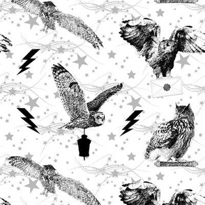 stars and owls - small - potter's world