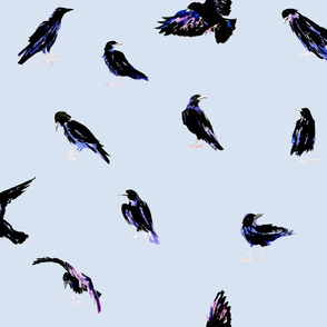 Painted Crows