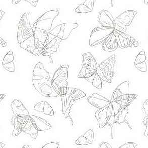 Butterfly Wing Medley