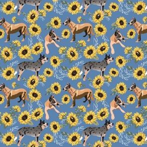Zebra Cupcake Stripe