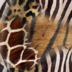 Animal Print Collage