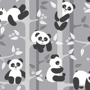 panda forest - gray