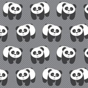 Pandas on gray