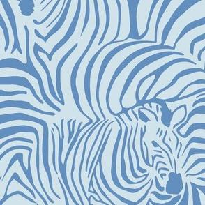 Zebra Breach blue