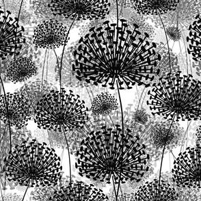 Black and White Dandelions invert