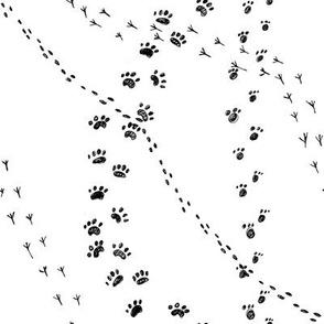 Minimalistic animal print black and white