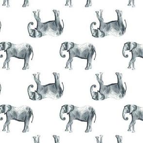 Elephant Watercolor Pattern