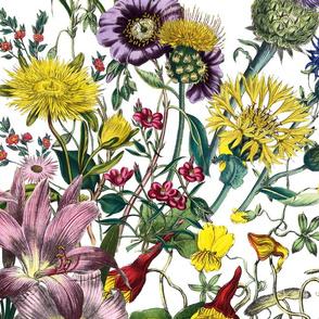 Bloomin' Lovely! ~ Bright ~ Jumbo
