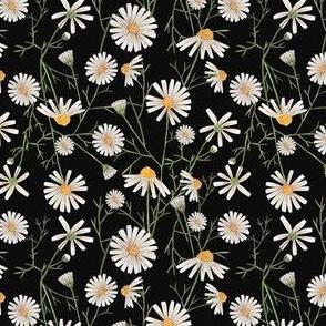 Chamomile Seamless Pattern