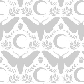large moth and moon-gray