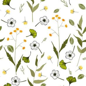 Herbal wildflower
