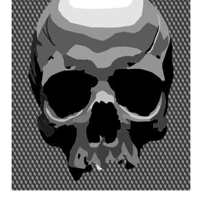 skull panel
