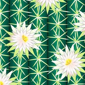 cactus blossoms 2 lg