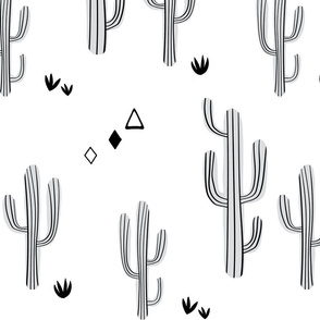 Large cacti-white and black